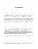 Principles of Management Essay