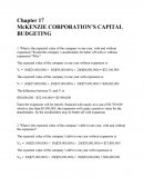 Corporate Finance Chapter 17 Mini Case
