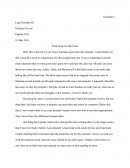 Final Essay for the Class