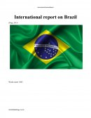 International Report on Brazil